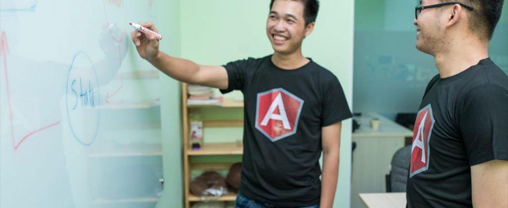 Developing custom software development solutions